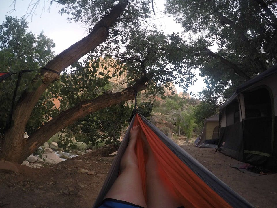Zion Rv And Campground (hi-road), UT | The Dyrt